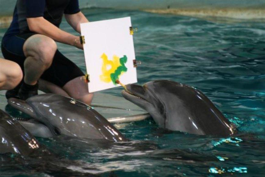 Delfinai tapo.
