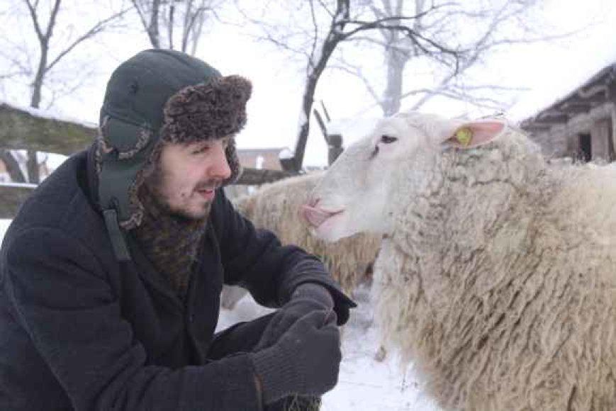 argužių kaime auginamos avys sako, kad kalbėti apie paslaptis nereikėtų, nes paslaptys kuria stebuklus, o apie stebuklus nieko nepasakyti – tiki jais arba ne.