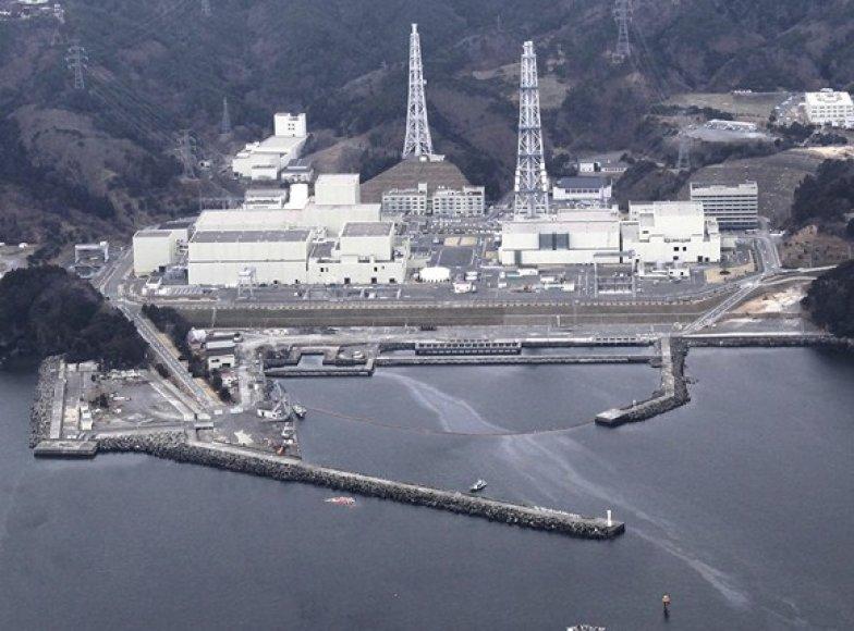 Onagavos atominė elektrinė
