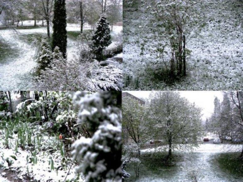 Sniegas Pietų Lietuvoje