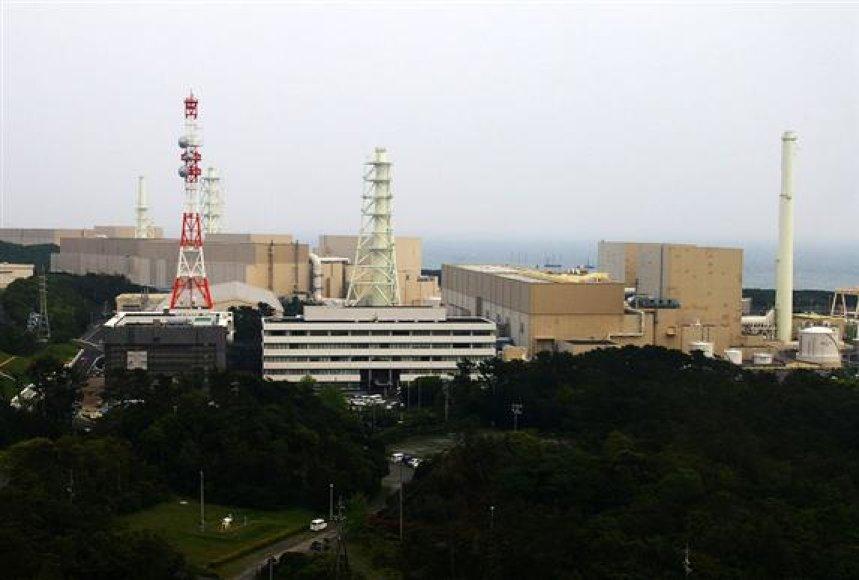 Hamaokos atominė elektrinė