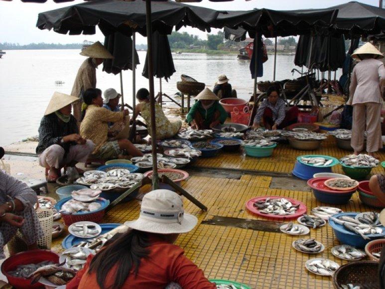 Žvejų laimikis