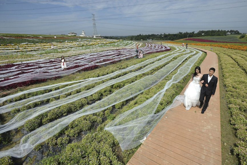 Ši vestuvinė suknelė – pasaulio rekordininkė. Jos šleifas siekia net 4,1 km