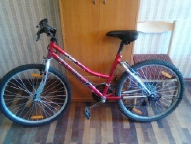 Pavogtas dviratis