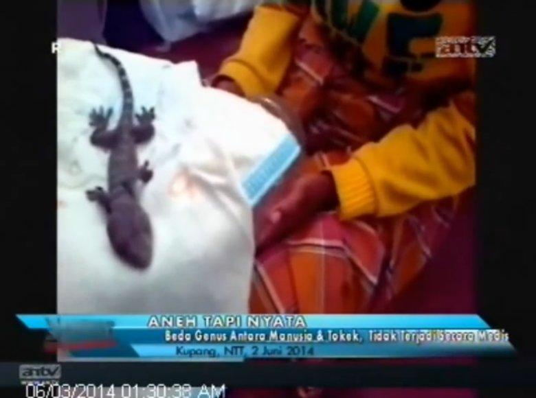 """Indonezijoje moteris """"pagimdė"""" driežą"""