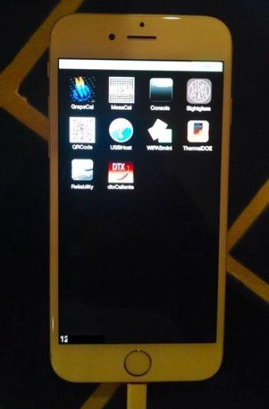 """Vartotojas mėgino parduoti """"iPhone 6"""" prototipą"""