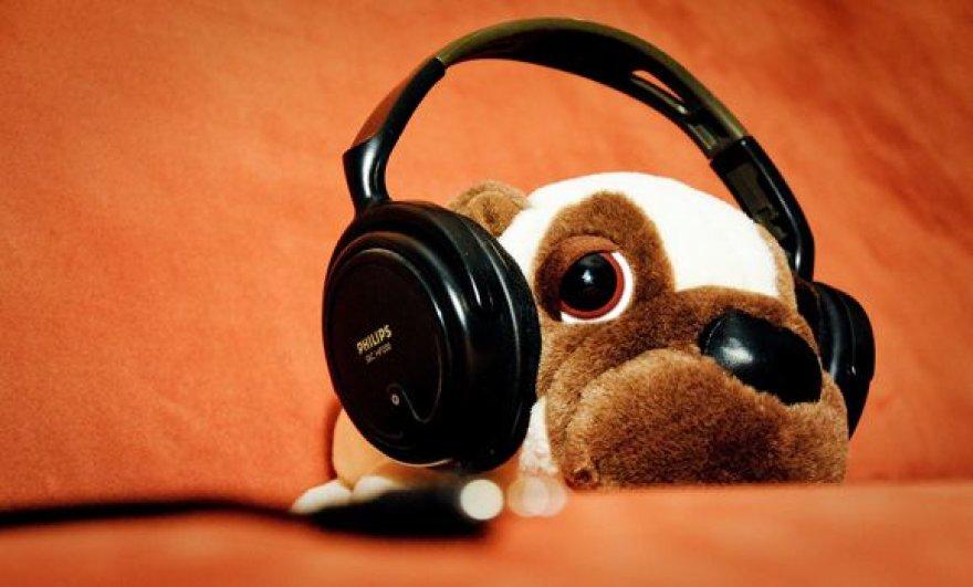 Nuo triukšmo gelbsti ausinės