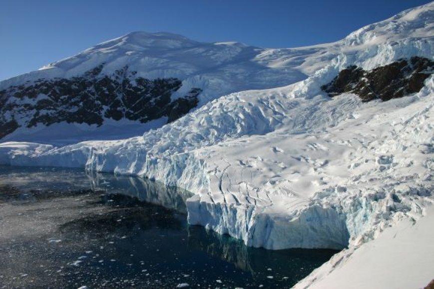 Antarktidos gamta