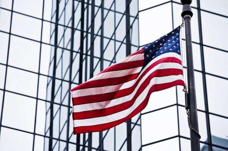 Amerikos vėliava