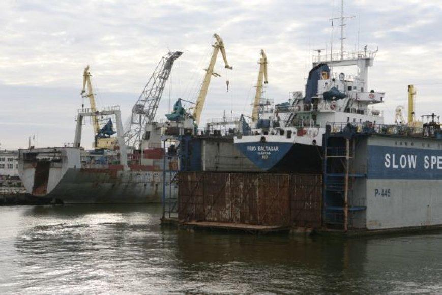 Daugiausia gyvsidabrio į Kuršių marias ir Baltijos jūrą patenka dėl pramonės įmonių veiklos, atliekų deginimo. Šis sunkusis metalas patenka į žuvų, kurios vėliau patenka ant mūsų stalo, organizmą.