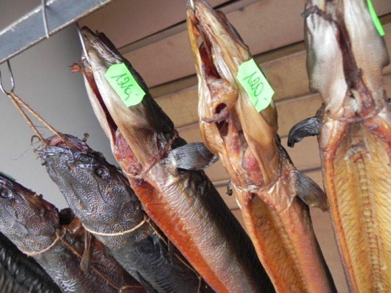 Prekyboje ne itin dažna žuvis ungurys Jūros šventėje kainavo 120 Lt.