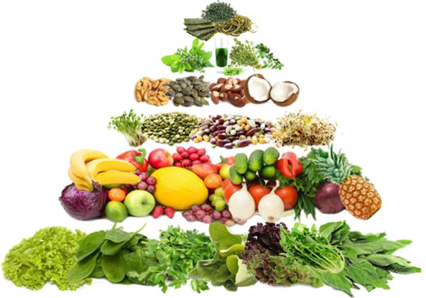 Gyvo maisto piramidė