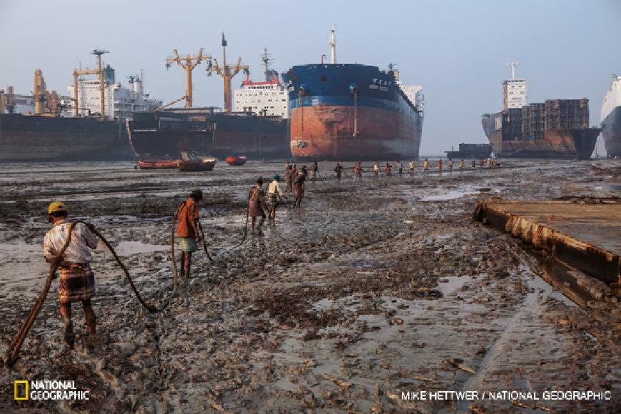 Laivų ardytojai per atoslūgį tempia 5000 kg sveriantį lyną ant kranto ištraukto laivo link. Jie ketina suktuvu leisti ardomo laivo dalis į krantą.