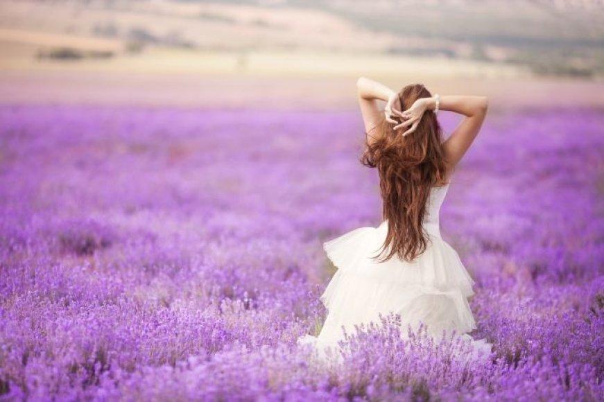 Moteris levandų lauke