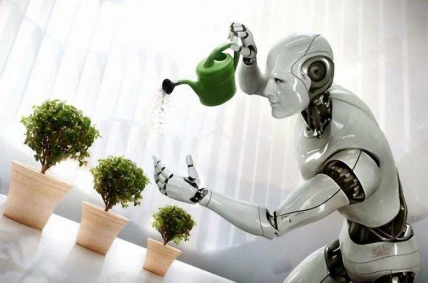 WN robotas asistentas