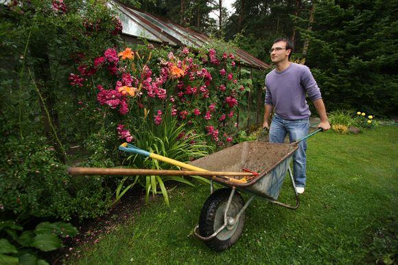 Sodininkas