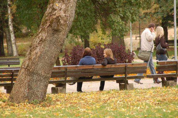 Nepaisant sustabdyto konkurso, nauji suoliukai Sereikiškių parke turėtų atsirasti iki kitos vasaros.