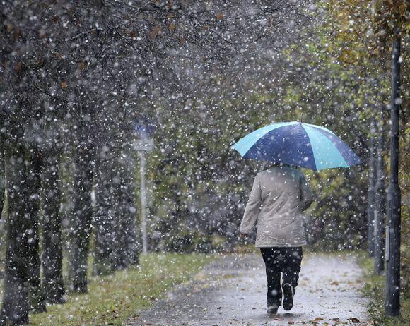Pirmasis sniegas kaip lietus....