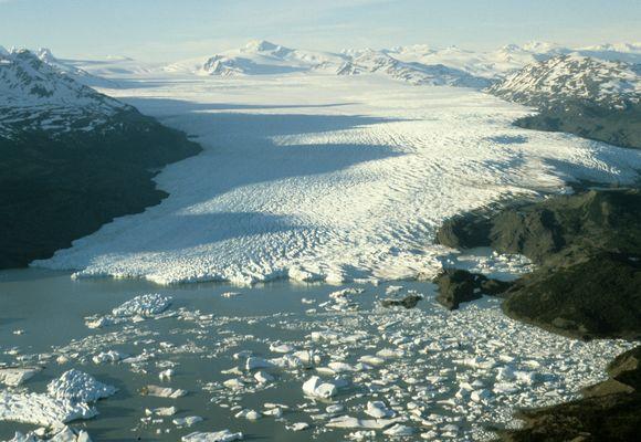 Pilkasis ledynas Čilėje