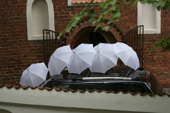 Scanpix nuotr./Stano vestuvės po skėčiais