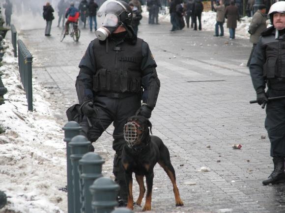 Policininkas su šuniu