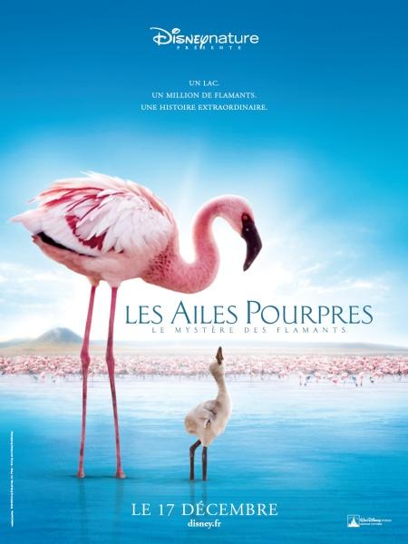 Filmas: Purpurinis sparnas: Flamingų paslaptis