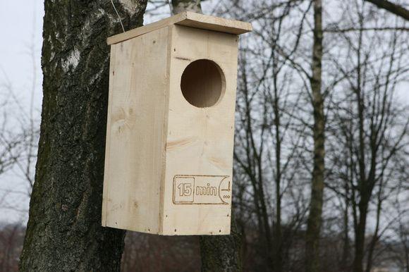 Didieji dančiasnapiai mielai apsigyvena žmonių iškeltuose inkiluose, todėl LGGD nariai nutarė iškelti kuo daugiau namelių paukščiams.