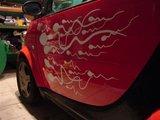 Asmeninio albumo nuotr./Stilizuoti spermatozoidai ant Jono automobilio – draugų gimtadienio dovana automobilio savininkui.
