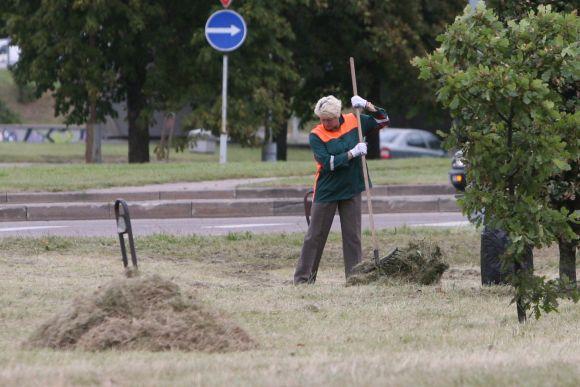 Vilniečiams nereikėtų nerimauti dėl pakelėse paliktos nupjautos žolės – ji surenkama tada, kai visiškai išdžiūva.