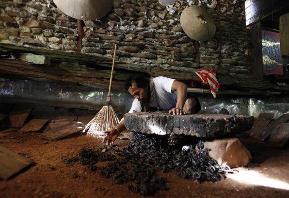 Skorpionų augintojas Suangas