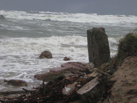 Klaipėdoje siautėjęs vėjas vartė medžius, tvoras, sutrikdė uosto darbą, apniokojo prekybos centrus.