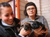 J.Andriejauskaitės nuotr./Globoti benamius gyvūnus R.Gineikienei (dešinėje) padeda keletas savanorių. Viena jų – aktorė S.Šakinytė, per pusmetį ji rado namus apie 30 kačių.