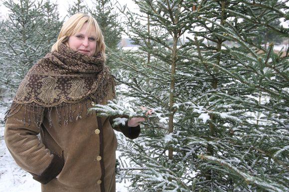 Vilniaus miškų urėdijos medelyno viršininkė R.Konstantinavičienė sakė, kad eglučių pageidaujantys pirkėjai jų gali įsigyti nors ir dabar.