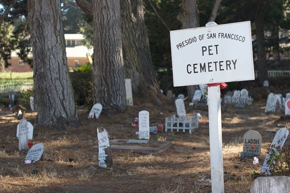 Dave'o Parkerio/wikimedia.org nuotr./Pet cemetery in San Francisco