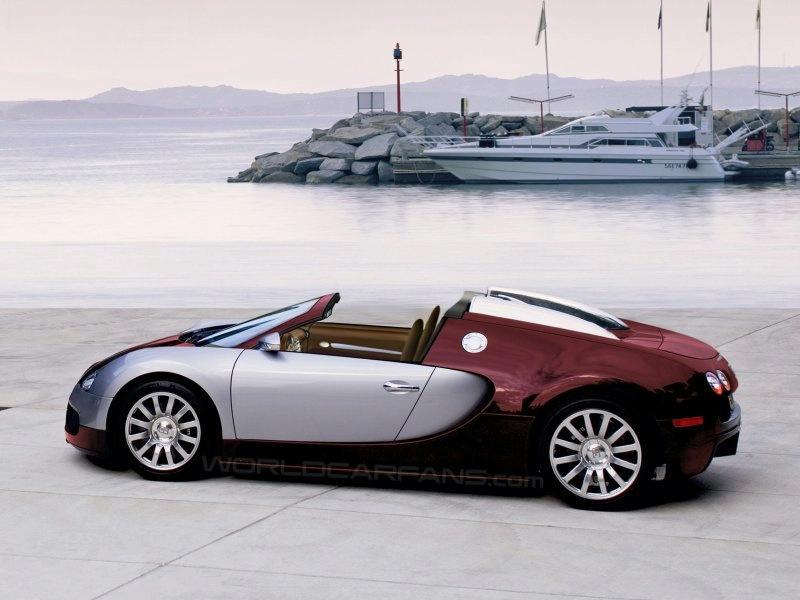 """""""Bugatti Veyron Targa"""" pasirodys 2009 metais"""