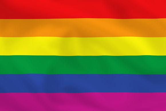 Shutterstock nuotr./Karolis Sakalauskas: man homoseksualai netrukdo, kol nesiafišuoja, tačiau negaliu pakęsti, kai jų apstu televizijoje, teatre ir pan.