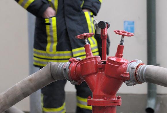 Gesinant gaisrą, ugniagesių pagalbos neprireikė.