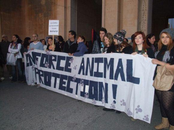 GGT Pifas nuotr./Protestuotojai cirko žiūrovus pasitiko ir ialydėjo su plakatais ir skanduotėmis.