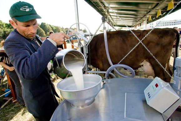 Pieno ir jo produktų kainų augimas artimiausiu metu nesustos.