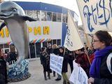AFP/Scanpix nuotr./Gyvūnų teisių gynėjų protesto akcija prie Jerevano delfinariumo Armėnijoje