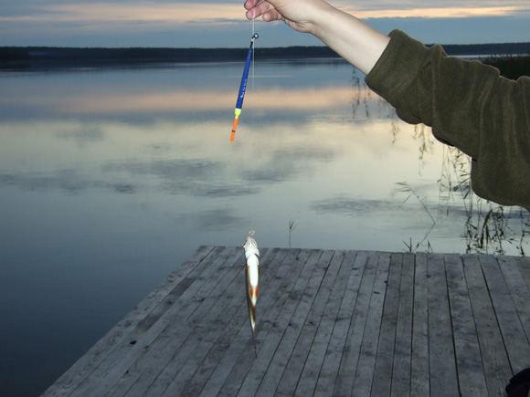 Romo Bubelio nuotr./Jei gylis viraija 2 metrus, tikslinga naudoti slankiąją plūdę, pritaikytą meakerioti didelėje gelmėje.