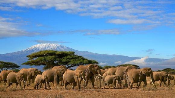 123rf.com nuotr./10 Afrikos vietų, kurias turi pamatyti