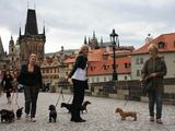 taksumafija.lt nuotr./Pasivaikačiojimas Prahos senamiestyje