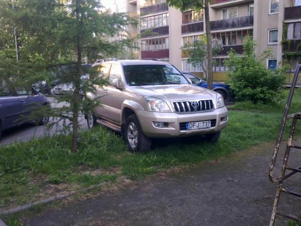 """""""Toyota Land Cruiser"""" ant žolytės"""