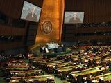 president.lt nuotr./Jungtinės Tautos