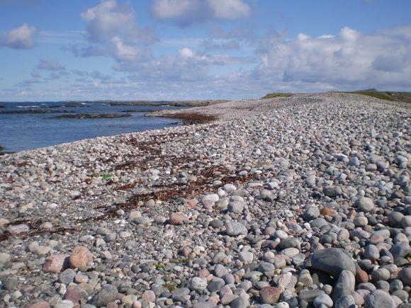 A.Tamulienės nuotr./Akmenuota pakrantė