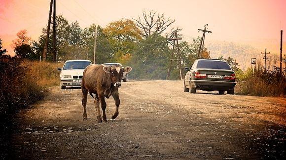 E.Afanasjevos nuotr./Tipiakas Gruzijos kaimo vaizdas
