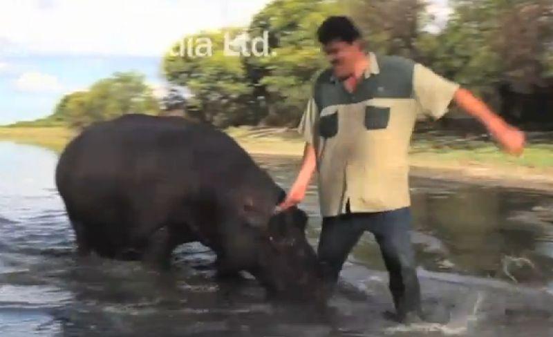 Hipopotamas Hamfris ir jo šeimininkas