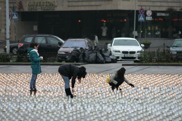 Katedros aikštėje buvo uždegtos 15 377 žvakutės, kurių liepsnelės simbolizavo kiekvieną nepriklausomos Lietuvos keliuose užgesusią gyvybę.