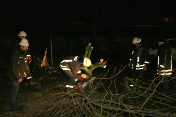 Gelbėtojai pjausto nuverstus medžius
